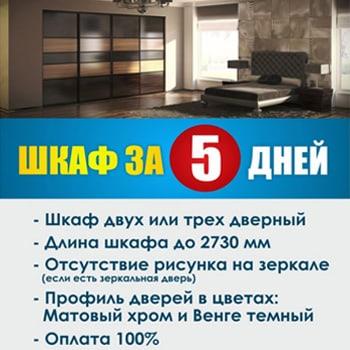 Шкаф за 5 дней в Pitstop мебель pitstop64.ru
